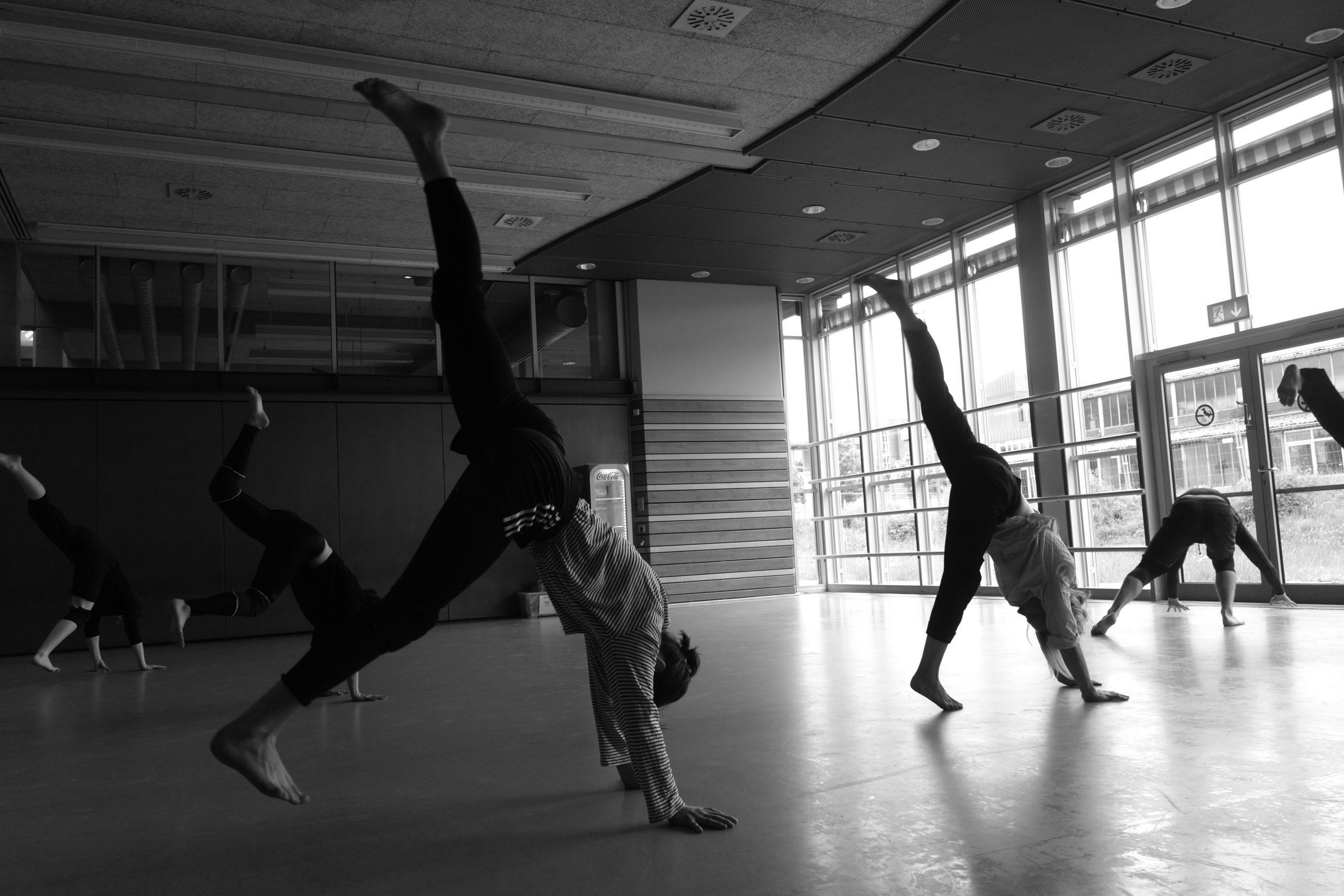 Danse et Acrobatie
